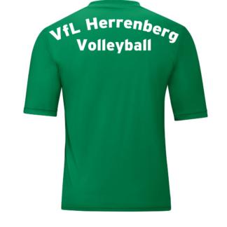 4233_06_P01_VfLH_Volleyball